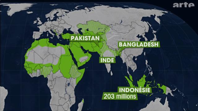 L'islam dans le monde. Le Dessous des Cartes, publié en mai 2011, disponible sur http://ddc.arte.tv