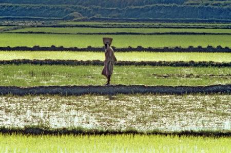 jet d'encre Retard de l'Afrique : le danger de la référence abusive au néo-colonialisme